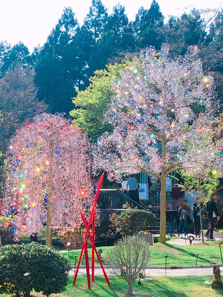 まるで夢の世界!インスタ映えを狙うなら箱根にある「ガラスの森美術館」がおすすめ♡_6