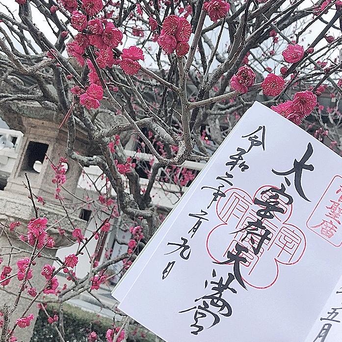 【女子旅におすすめ】福岡旅行 -第1弾-_1