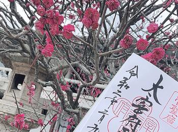 【女子旅におすすめ】福岡旅行 -第1弾-