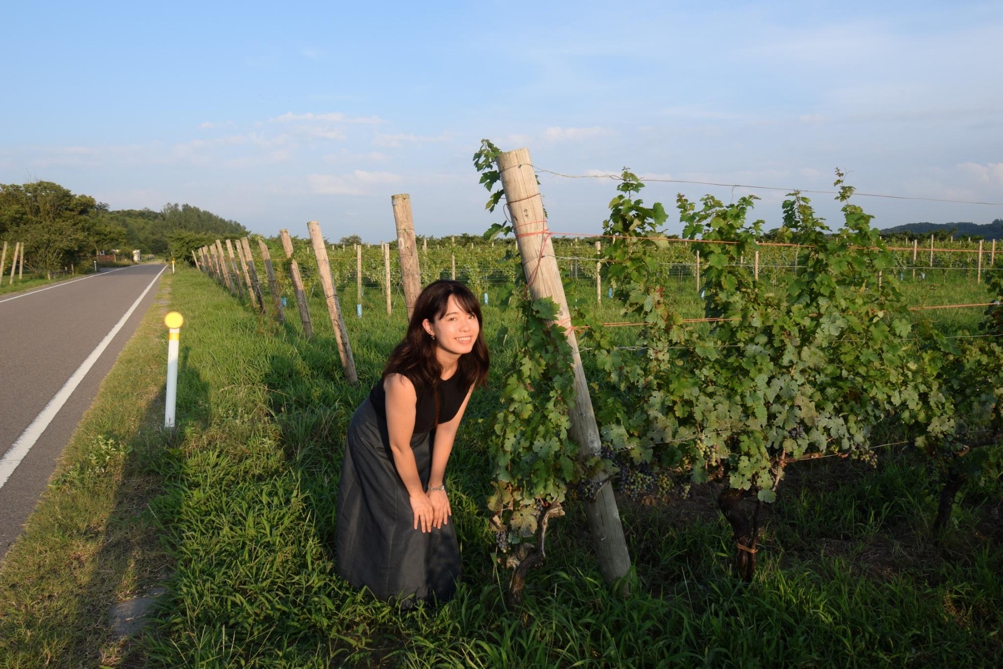 【女子旅におすすめ】ワイン好きさん必見♪葡萄畑を眺めながらゆったりワイナリーステイ♡_2