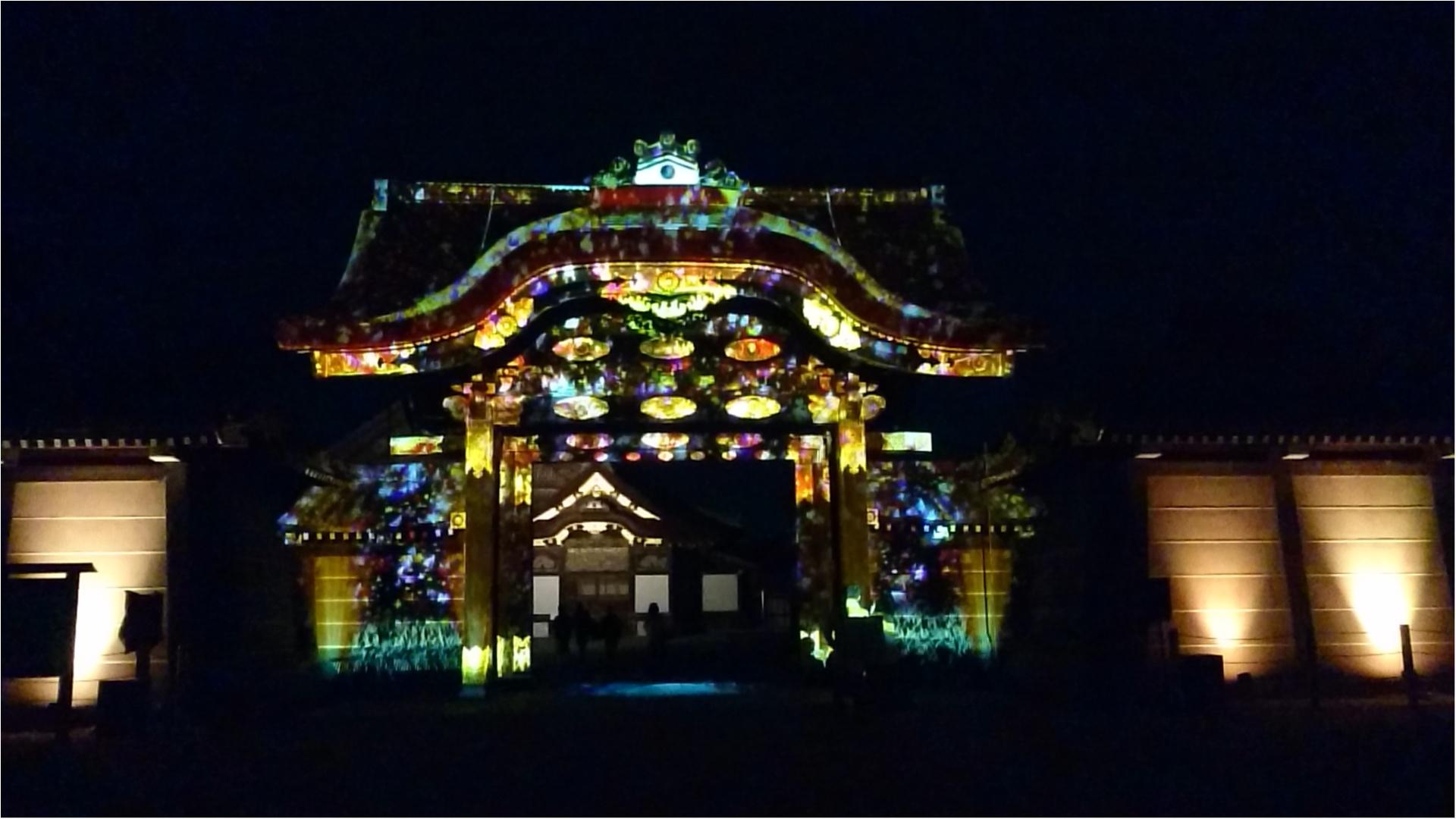 ≪京都・二条城≫先進アートとコラボ! 花がモチーフflowers by nakedライトアップ☆_1