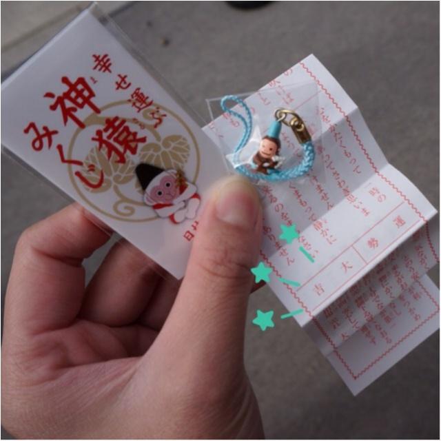 《幸せを運ぶ七色の神猿守が可愛い‼︎》東京赤坂にある日枝神社でひける人気の神猿みくじ♪_3