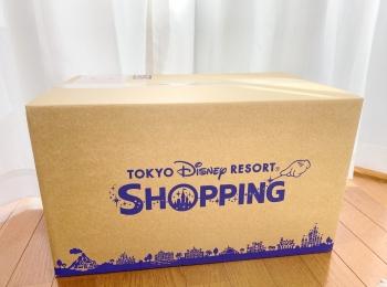ついに【ディズニー新エリアグッズ】をGET♡私の購入品はこちら♡