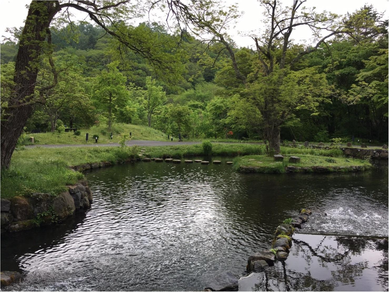 軽井沢女子旅特集 - 日帰り旅行も! 自然を満喫できるモデルコースやおすすめグルメ、人気の星野リゾートまとめ_62