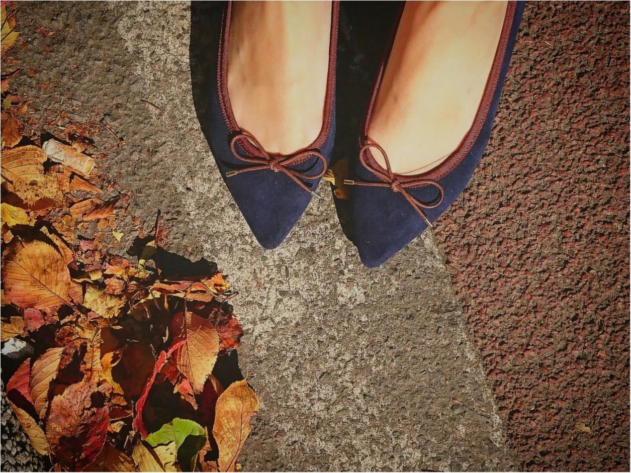 "【MORE】創刊40周年イヤーの締めくくり♪ ""MORE12月号"" 絶賛発売中!付録は、大人可愛い『 (JILSTUART) レザー調 レディなミニ財布 』_1"