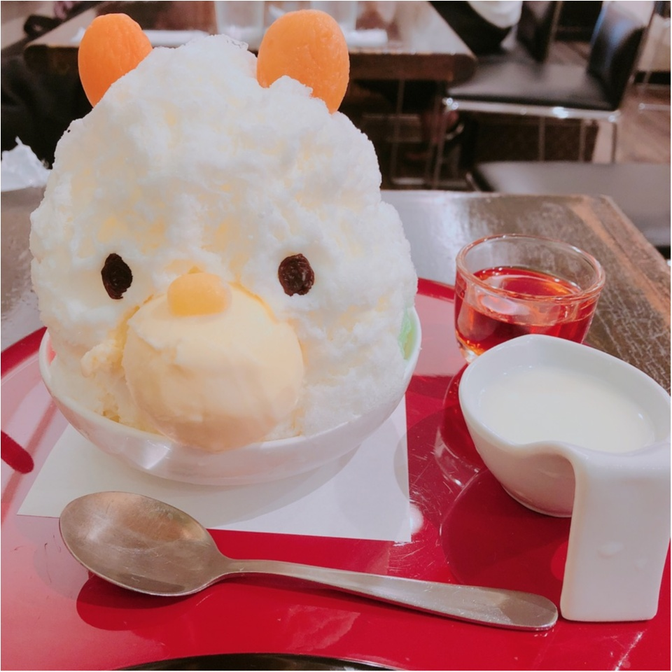 東京のおすすめかき氷特集 - 20代女子に人気のかわいくて美味しいかき氷店10選_21