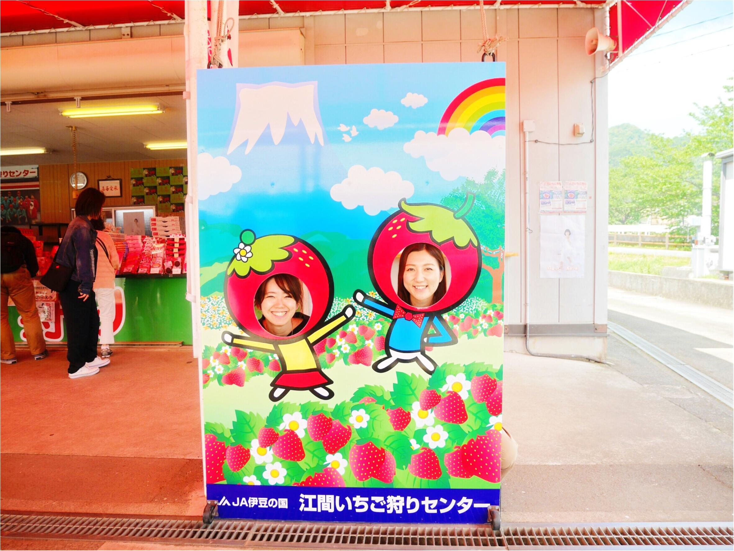 モアハピ1989の会で静岡バスツアー行ってきました♡_2