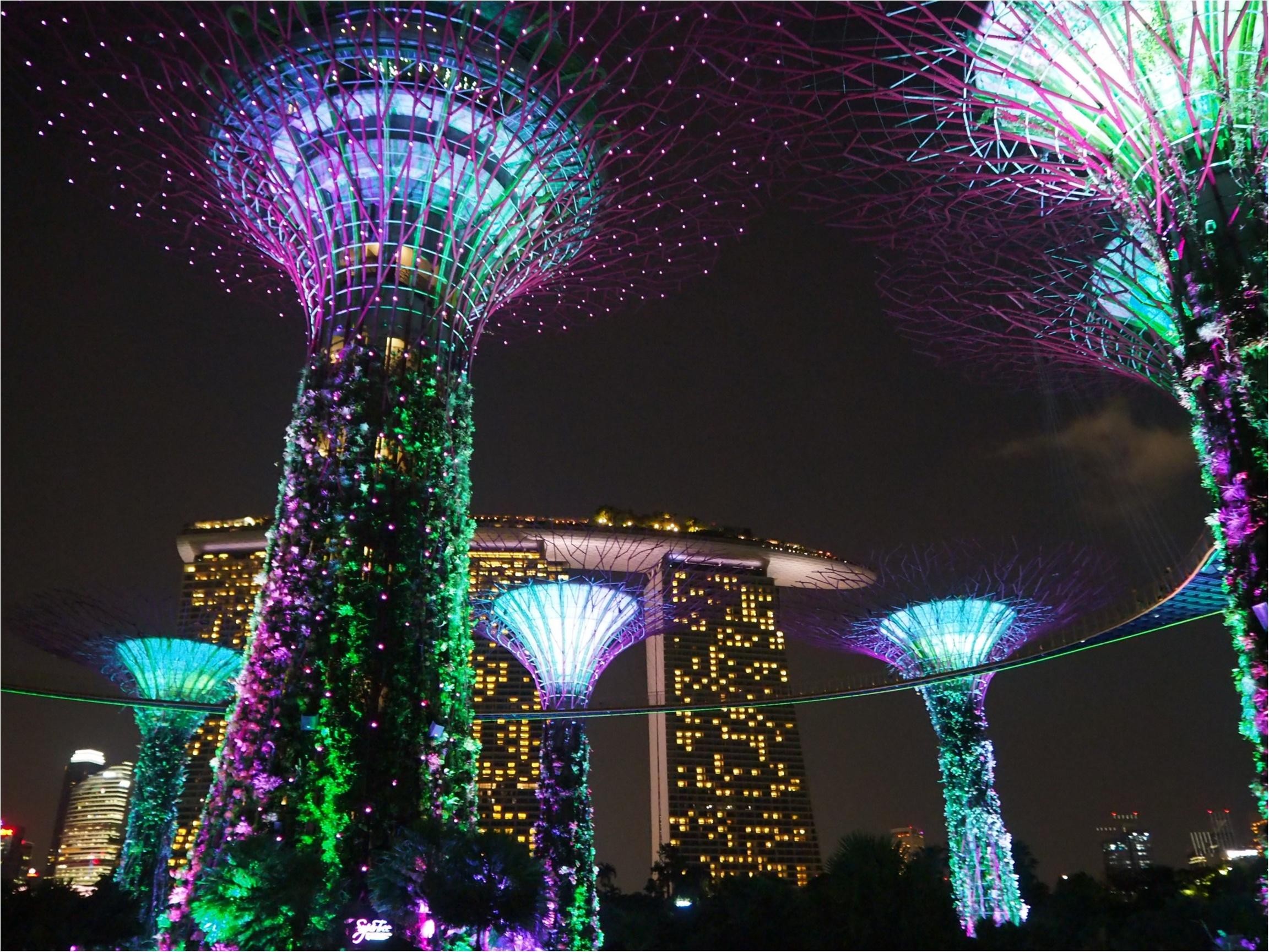 今年の休みはシンガポールへ!シンガポールおすすめスポット3選☆_10