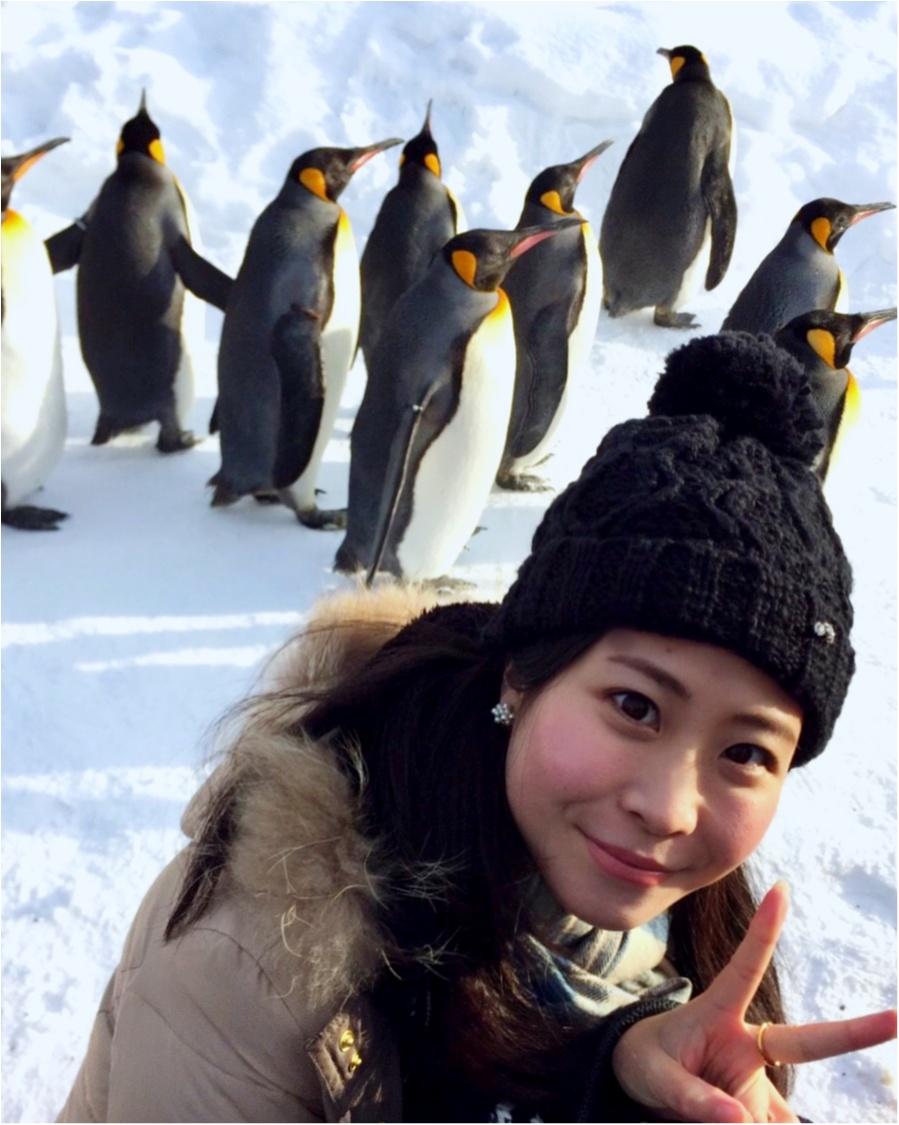 【#北海道旅行】冬の北海道ってとっても素敵❤︎雪まつりが始まる前に【絶対行きたいスポット】をご紹介&おさらいっ☝︎★_3
