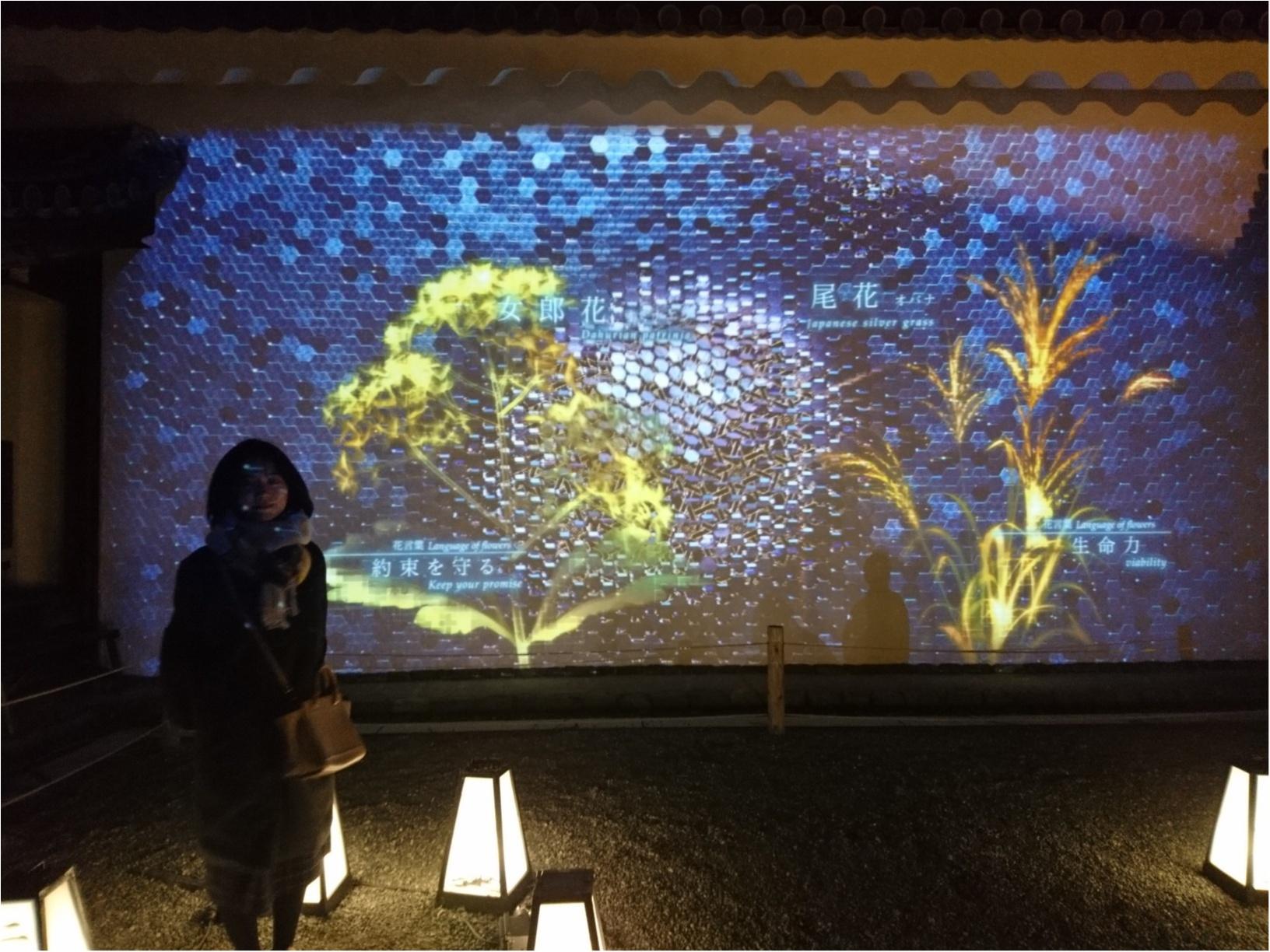 ≪京都・二条城≫先進アートとコラボ! 花がモチーフflowers by nakedライトアップ☆_3