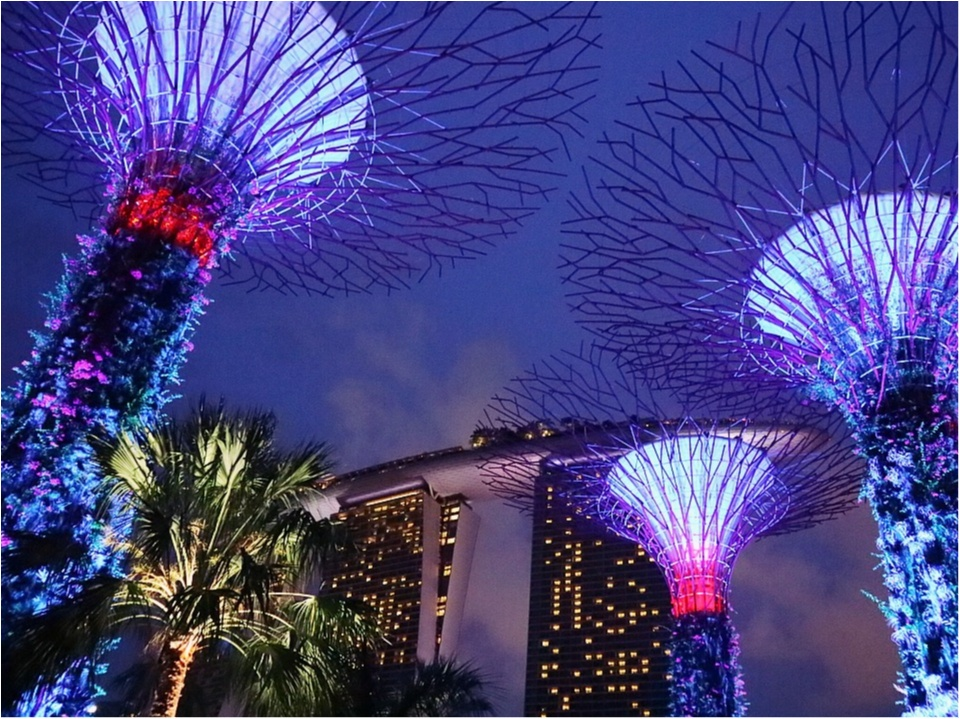 最高の女子旅ならここ。欲張り女子の望みを全部叶えてくれるシンガポール♡1度は見てみたい!絶景スポット編☻_4
