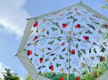 【雨空に花が咲く!?】《フラワーアートとコラボした傘》がおすすめ♡