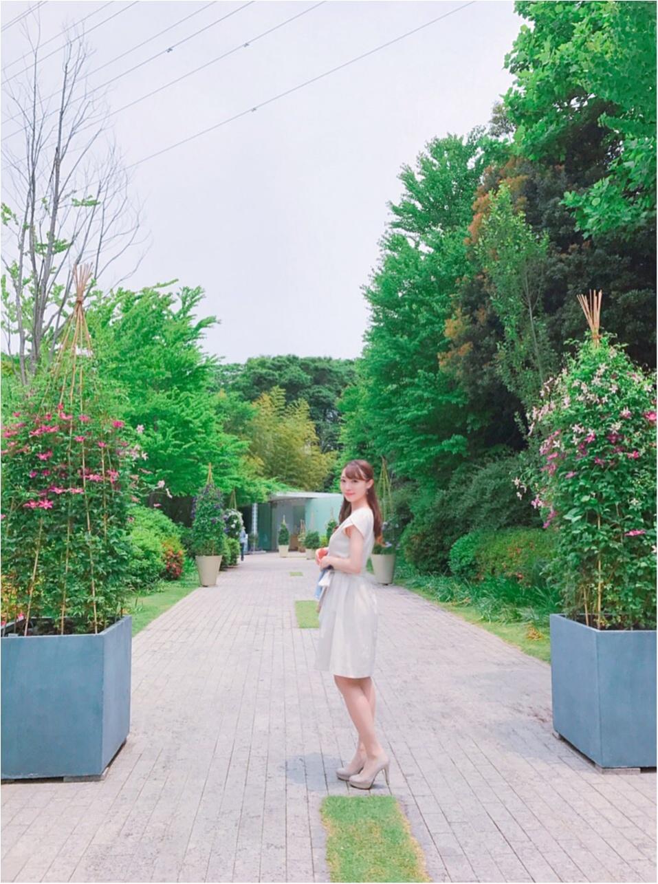 女の子の憧れ♡バラ園で素敵なひと時を、、(*^ω^*)_2