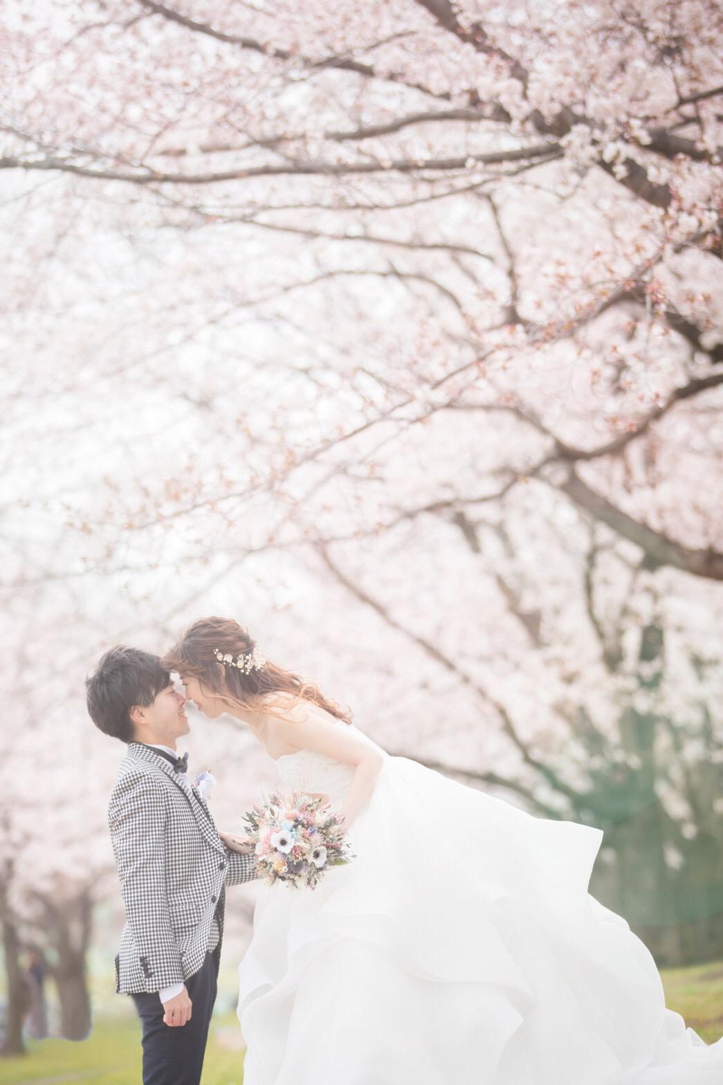 【桜ウェディング】桜満開の素敵なウェディングフォトを撮って頂きました♡_2