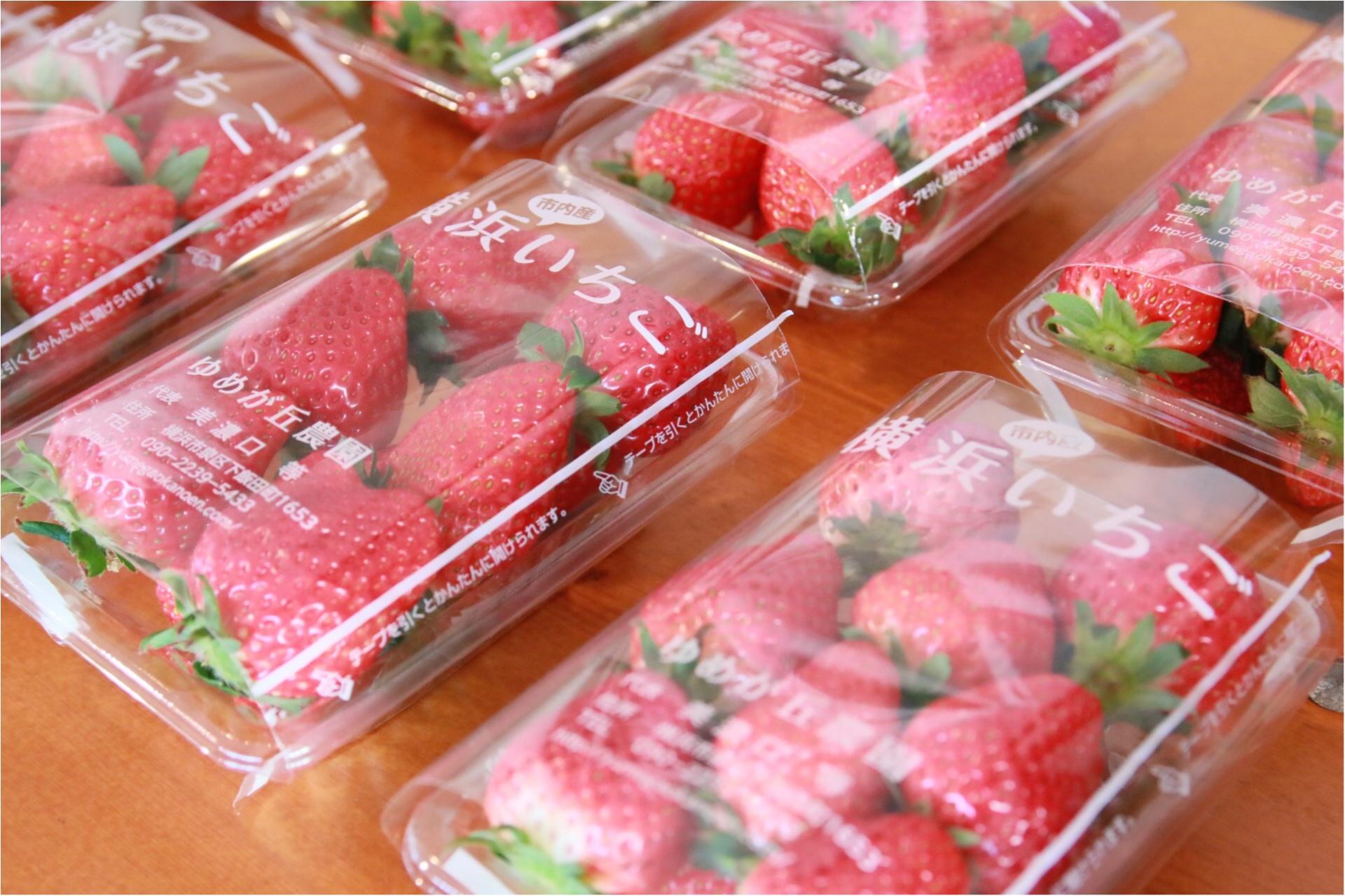 15(いちご)周年の『横浜赤レンガ倉庫』がいちご色に染まる11日間♡ 【2/2(金)から『Yokohama Strawberry Festival 2018』開催!】_1_5