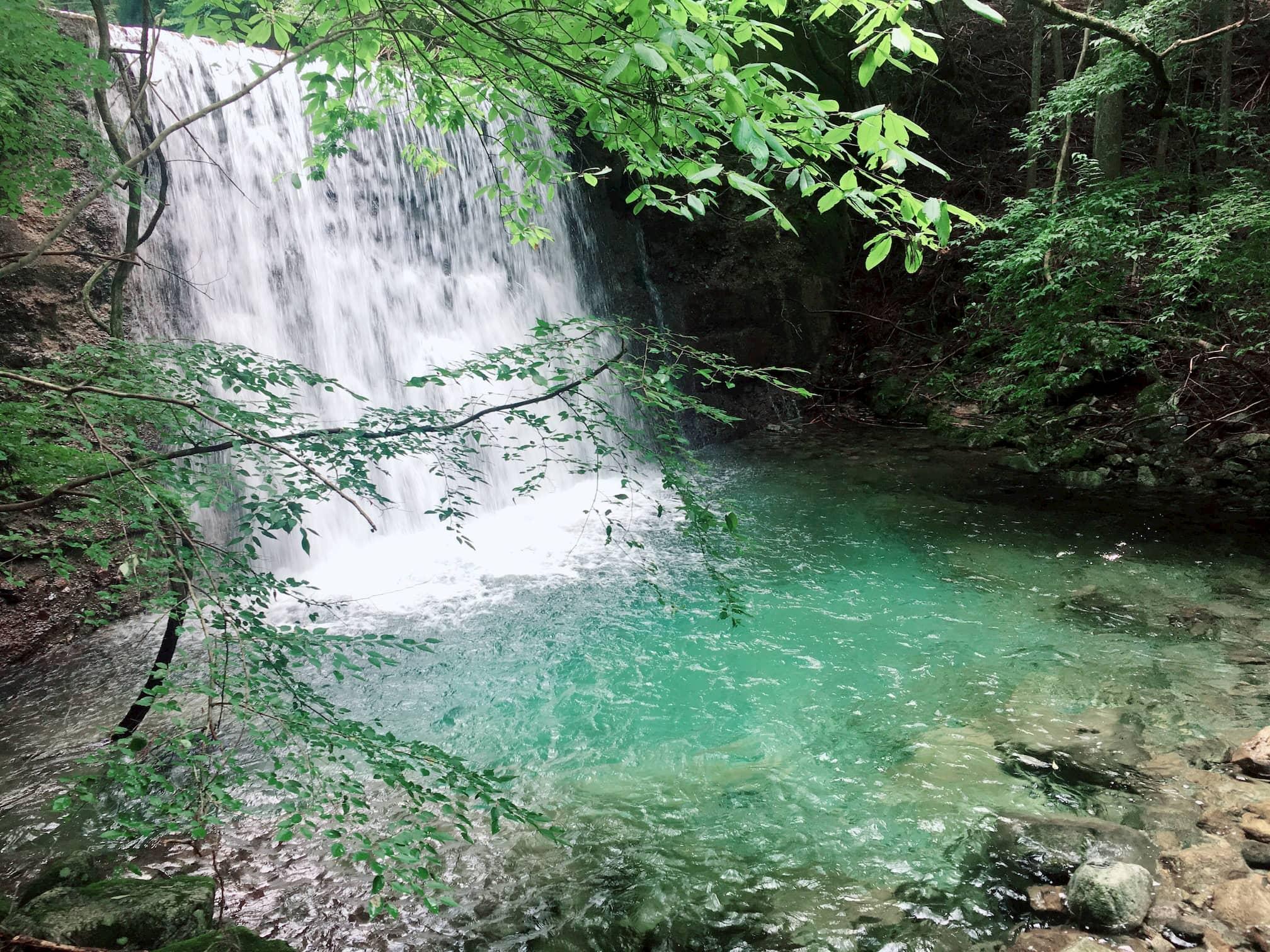 滝がキレイな写真