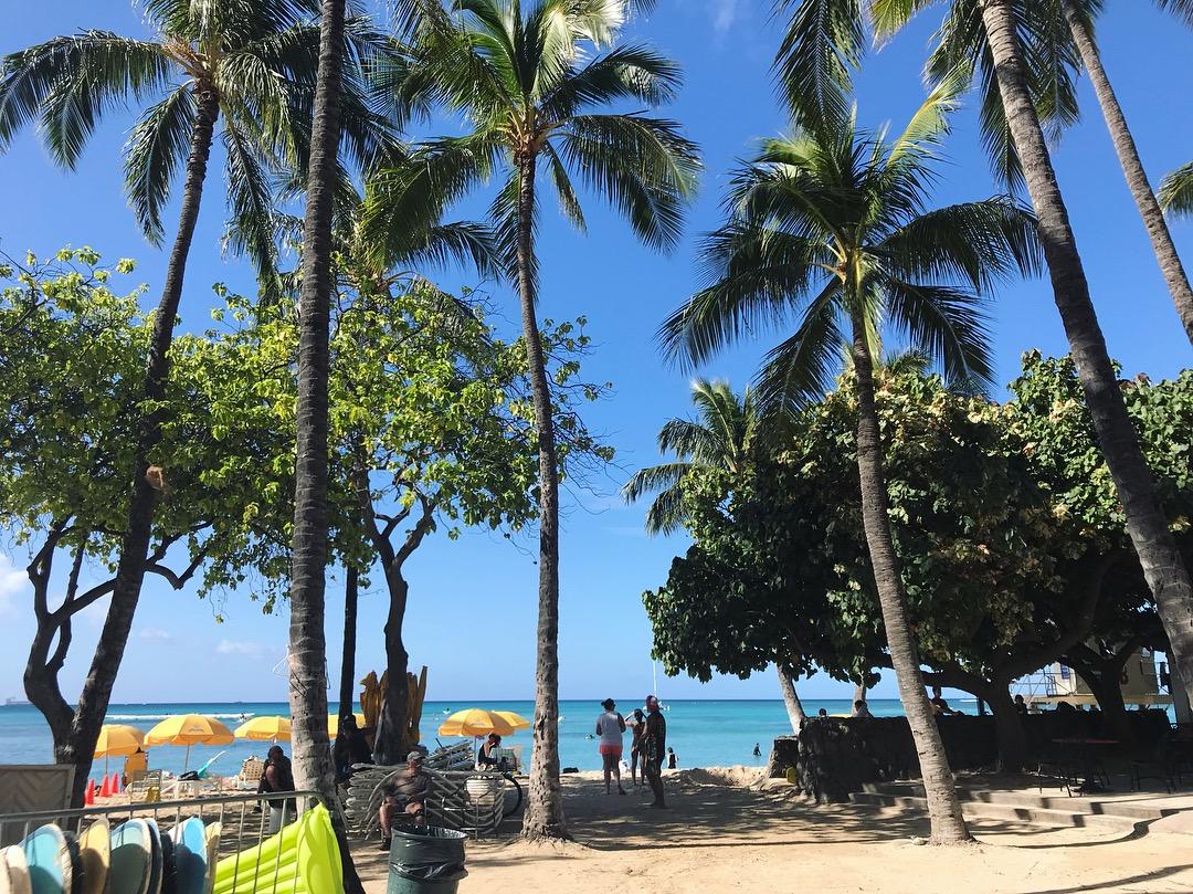 【#Hawaii】#2 写真で旅行気分を(๑>◡<๑) アクセス◎クーポンで15%オフが嬉しい美味しくてフォトジェニックなCAFE☕︎_7