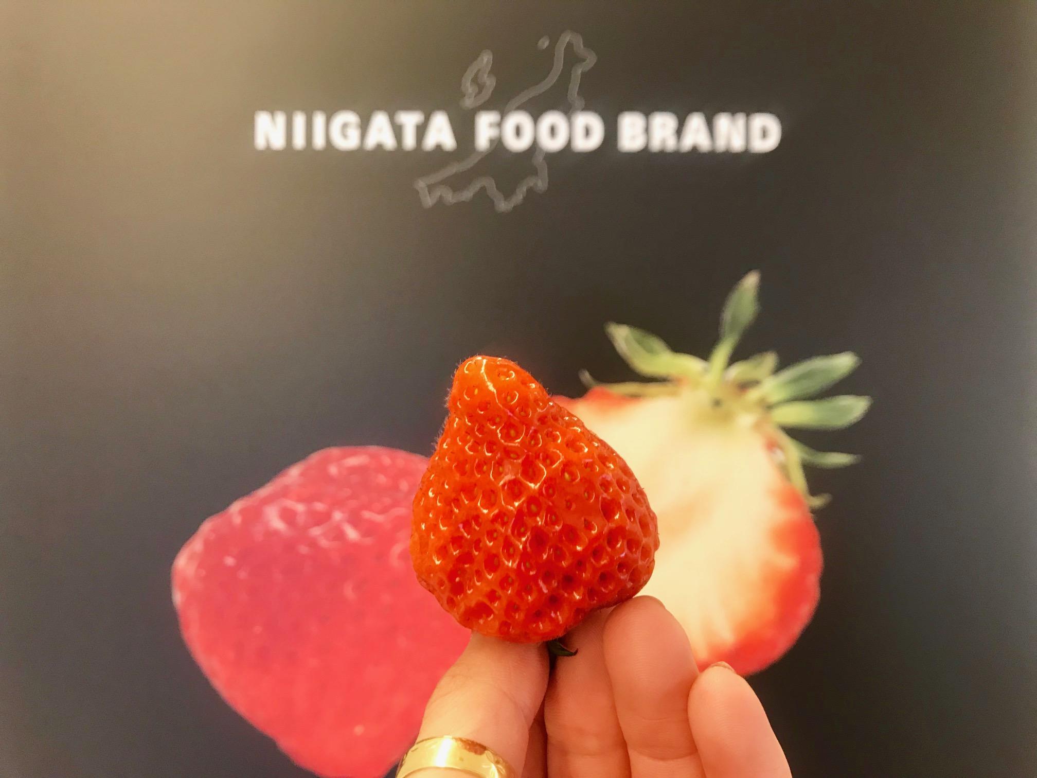 新潟県産「越後姫」を7個分使った『資生堂パーラー』4月限定のいちごパフェを、自分へのご褒美に♡_1