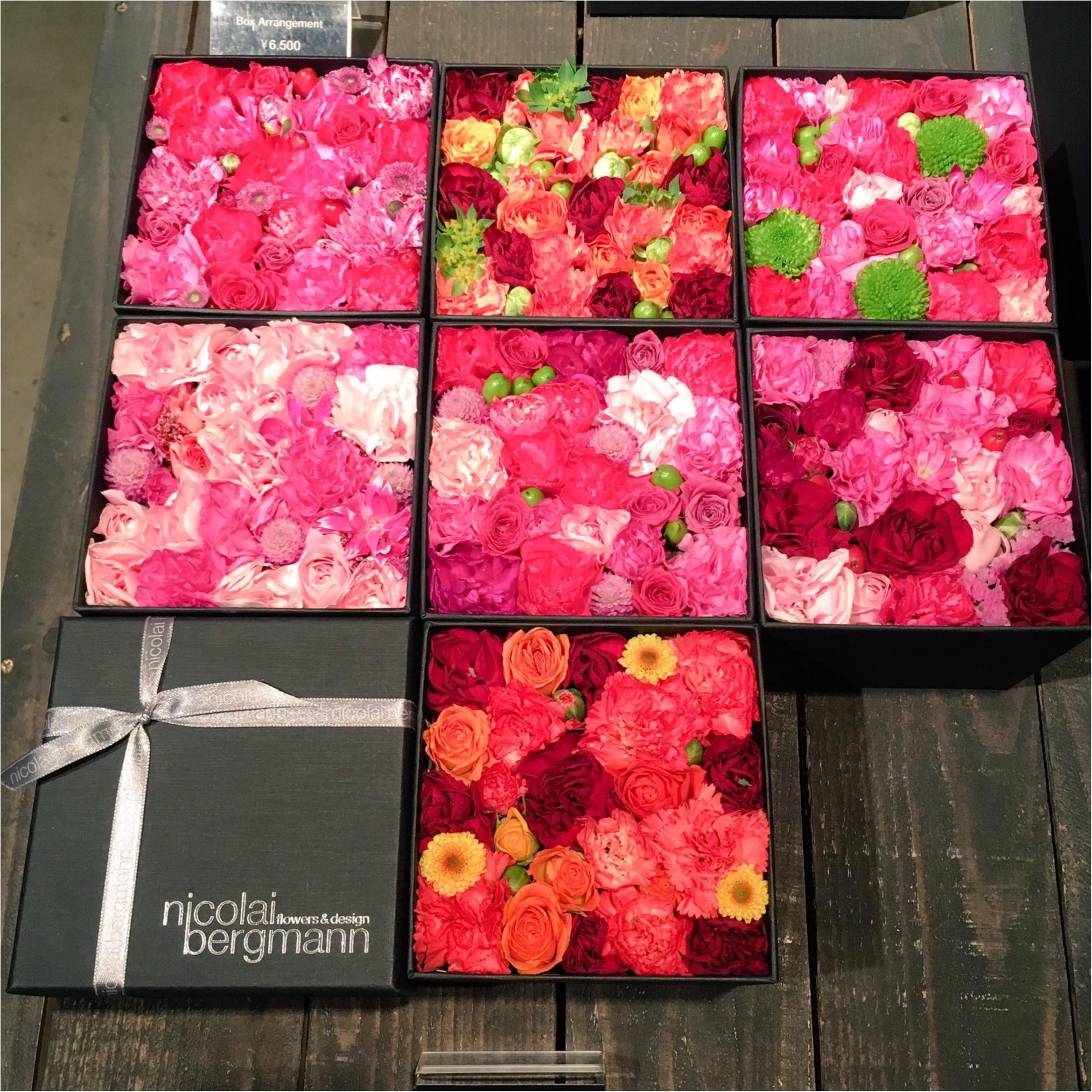 SNS映え確実♡南青山『ニコライバーグマン ノム』でお花に囲まれながら優雅なティータイムを…(﹡´◡`﹡ )_3