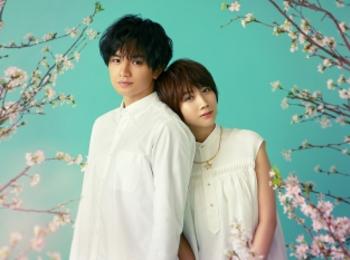 中島健人×松本穂香でNetflix映画『桜のような僕の恋人』制作決定!