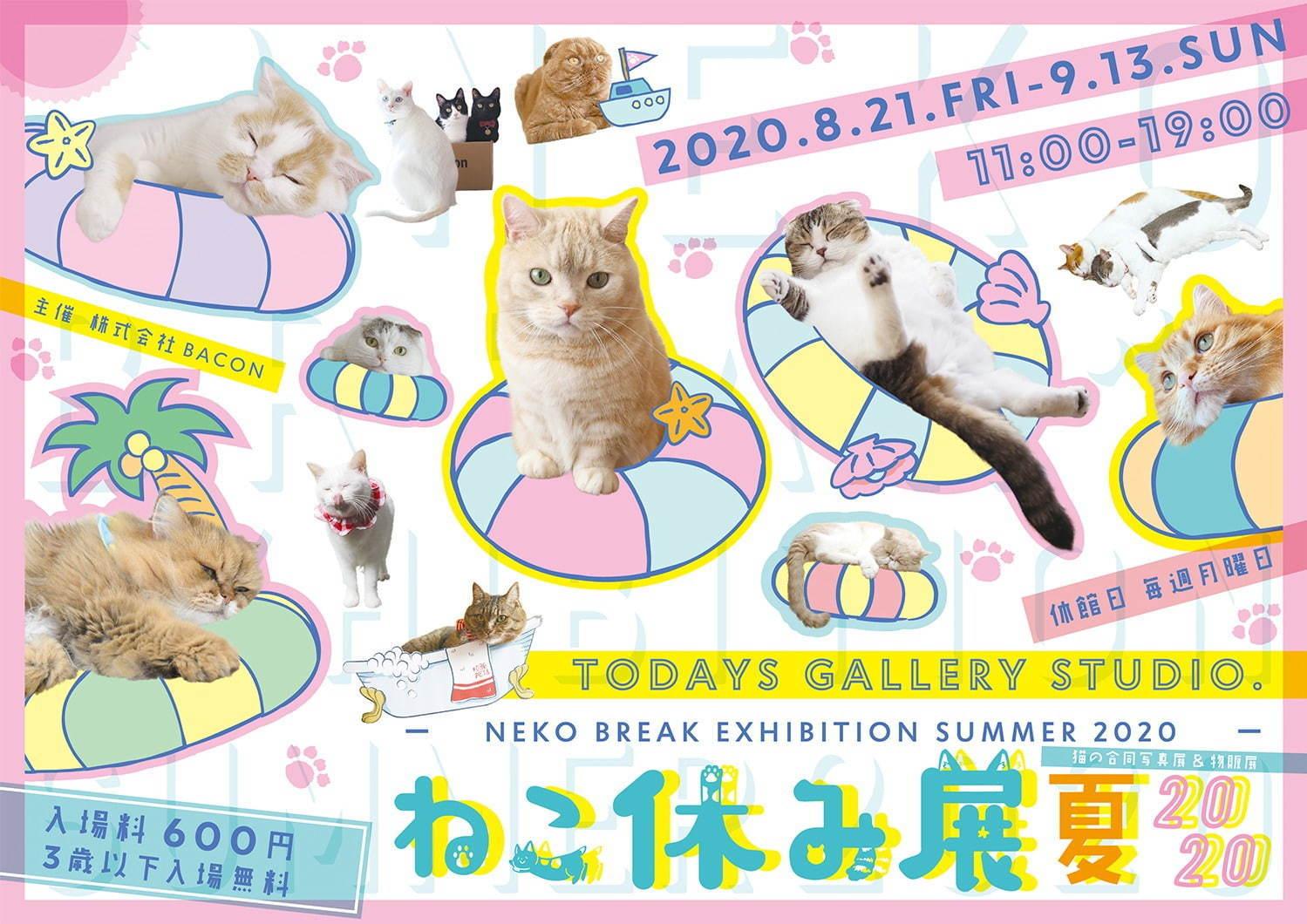 """可愛い""""にゃんこ""""が一堂に! 猫の合同写真展&物販展「ねこ休み展 夏 2020」が、東京・浅草橋で開催中_1"""