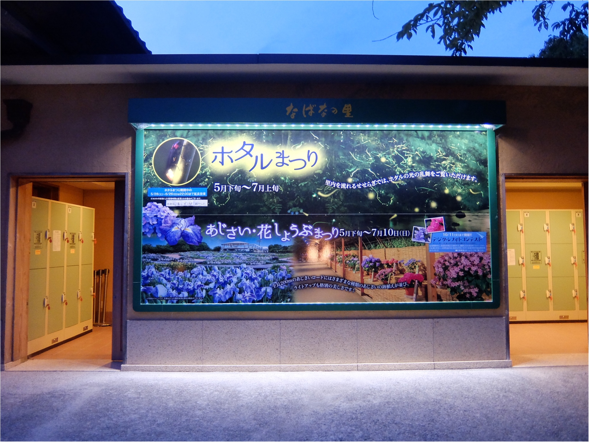 三重県ナガシマリゾート!夜はなばなの里でホタル観賞♡_8