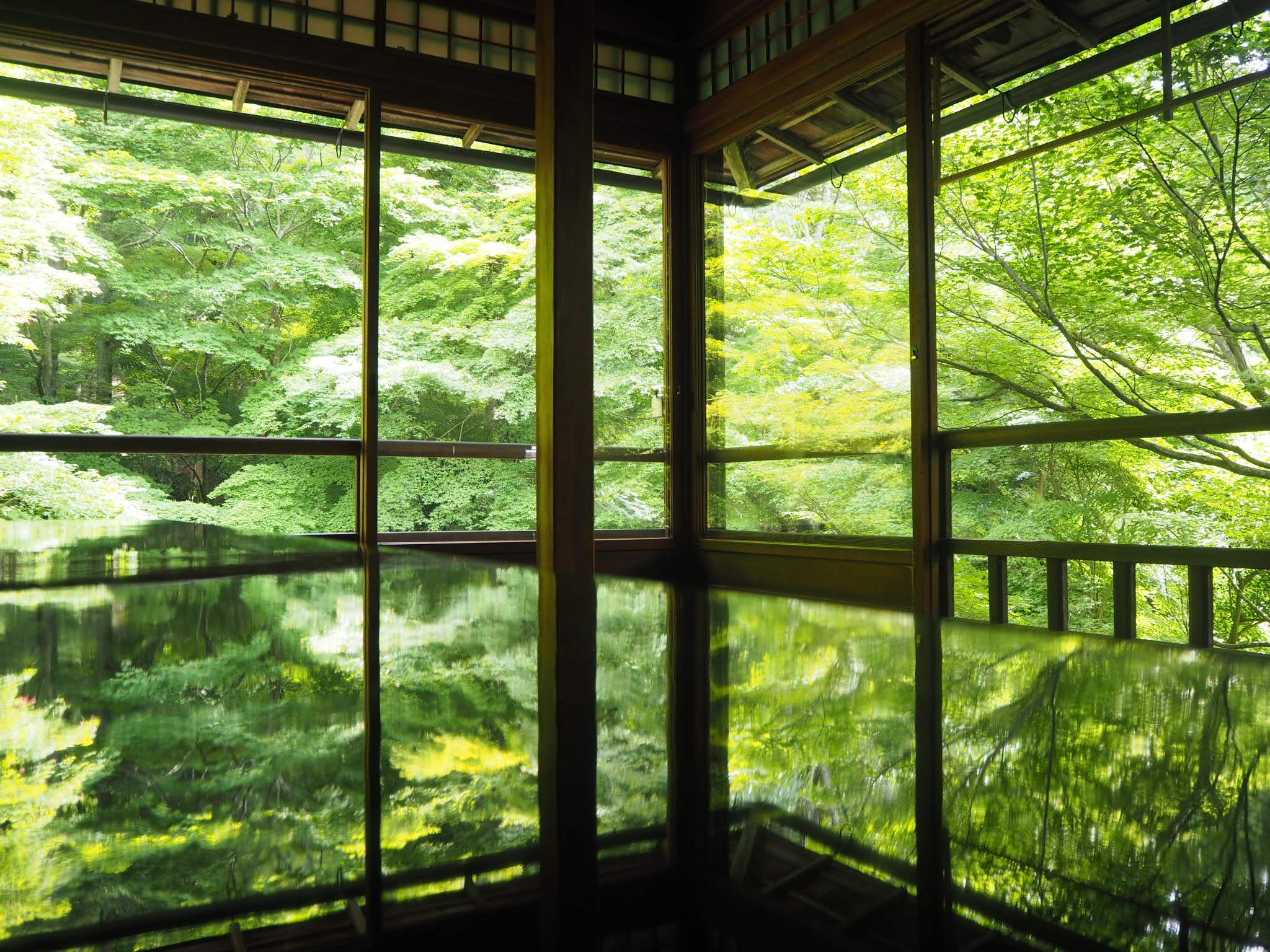 【女子旅におすすめ】京都で体験して最高だったベストメモリーまとめ♡_7