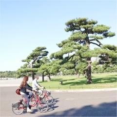 便利すぎて知らなきゃ損!ヨーロッパでも大人気の自転車サービスが日本にもあるって知ってた?!