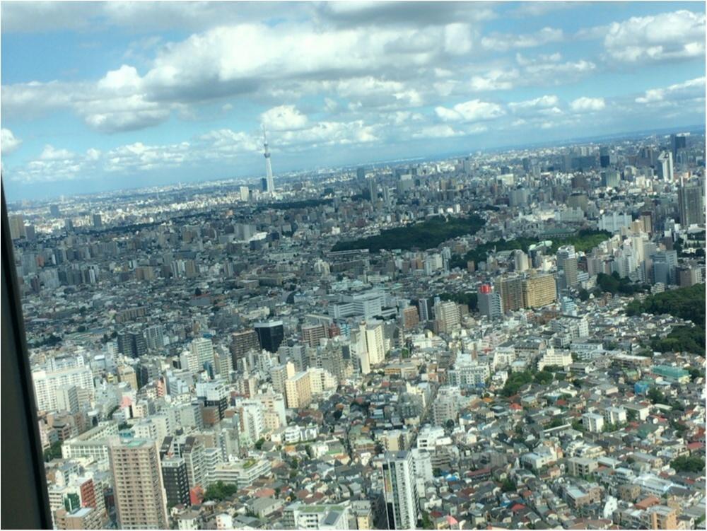 ◎行ってきました!SKY CIRCUSサンシャイン60展望台☆TOKYO弾丸フライト 4D体験☆_4