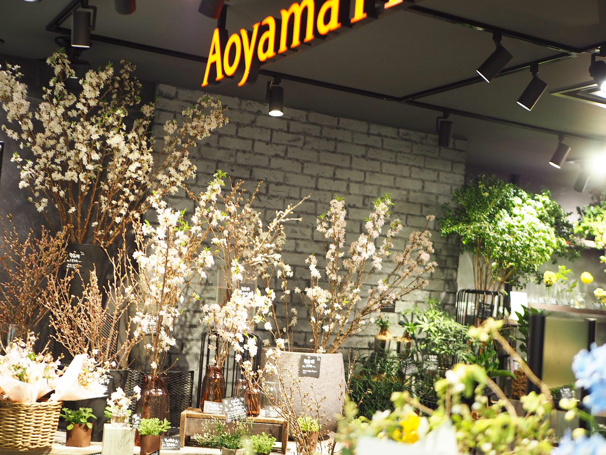 【おうちでお花見♡】AOYAMA FLOWER MARKETの桜が咲きました♩_3