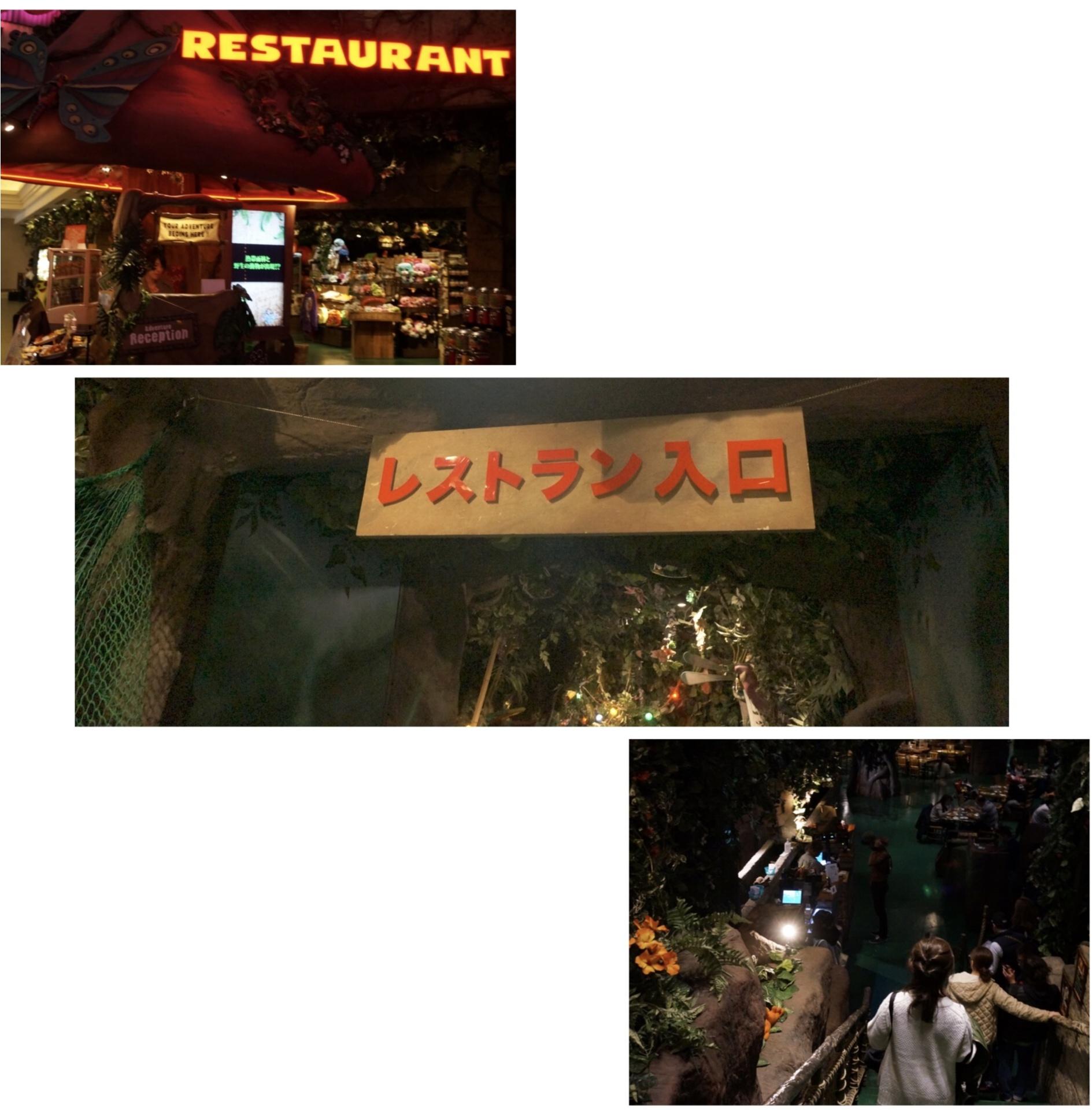 """まるで """" ジャングル """" みたい‼︎熱帯雨林と野生動物の保護をテーマにしたレストランが凄い✨ここでサプライズバースデーはいかが(*´∀`*)?_2"""