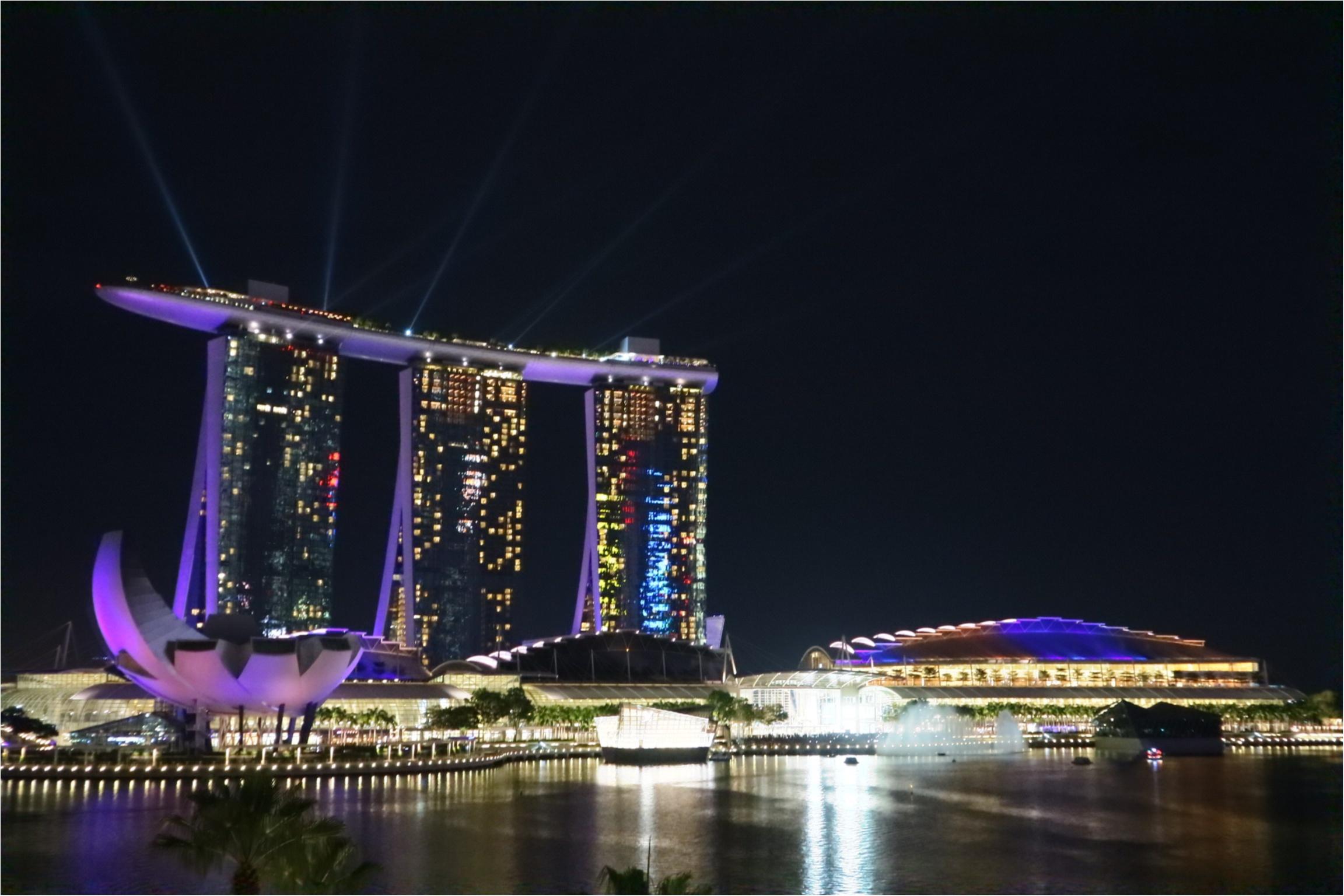 最高の女子旅ならここ。欲張り女子の望みを全部叶えてくれるシンガポール♡1度は見てみたい!絶景スポット編☻_5