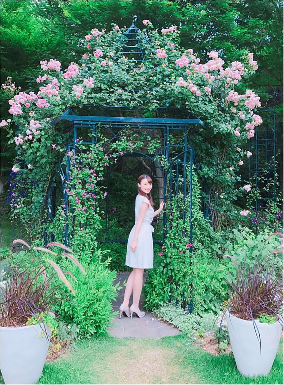 女の子の憧れ♡バラ園で素敵なひと時を、、(*^ω^*)_5