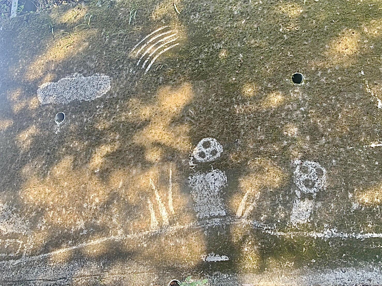 ジブリ好きにはたまらない 大分県の苔アート_3