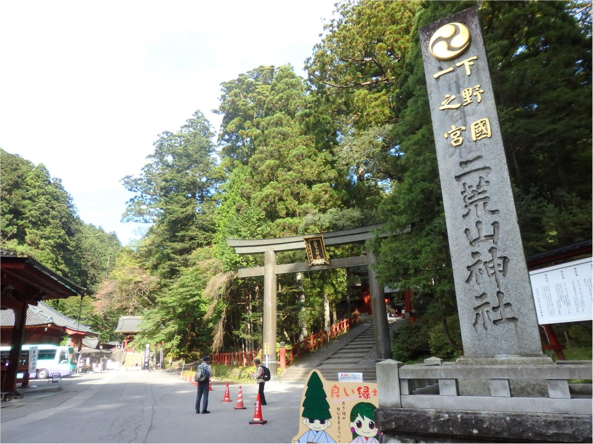【知らなかった!】日本一楽しめる神社へ潜入してみた_3