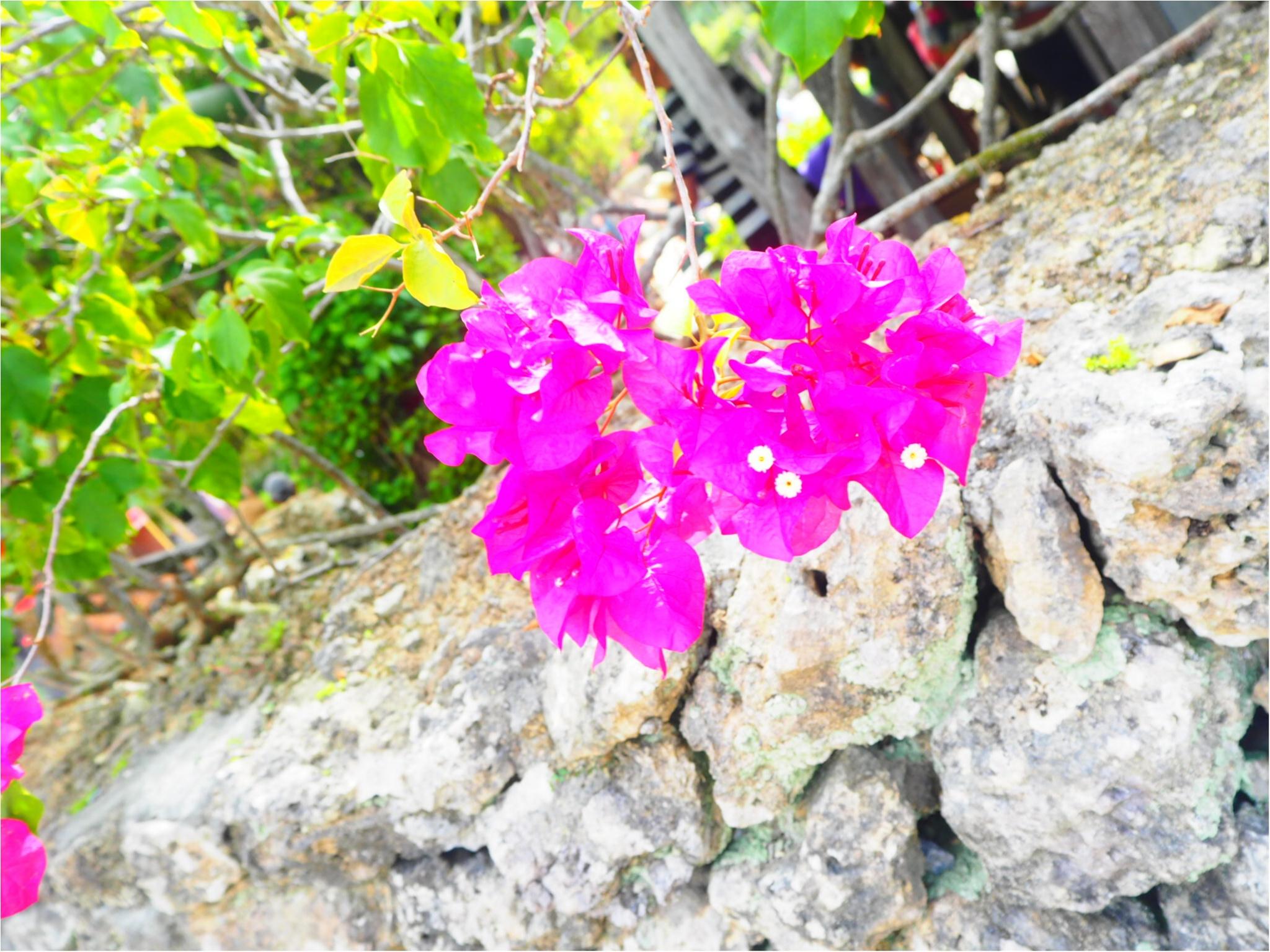 """【沖縄旅Part.②】車がなくても""""超""""充実できちゃう女子旅♡沖縄の綺麗な景色にとっても癒されました〜✴︎_2"""