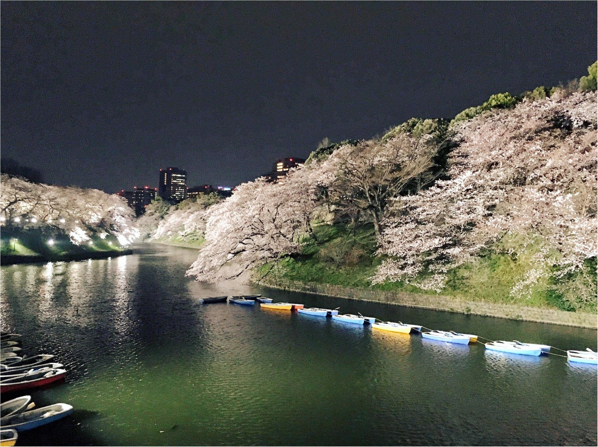 夜桜はしごしました♡六本木〜千鳥ヶ淵_2