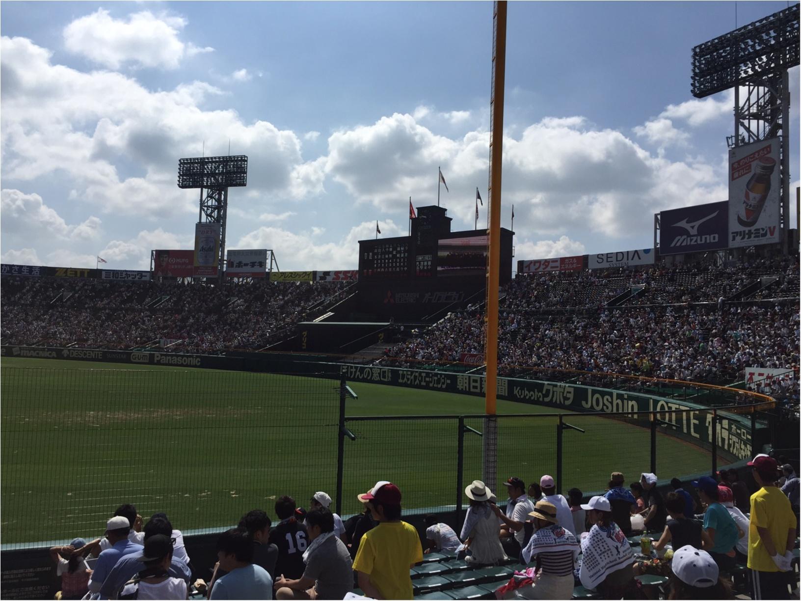 今年の夏もアツイ!!高校野球を思いきり楽しむコツ、教えちゃいます♪_3