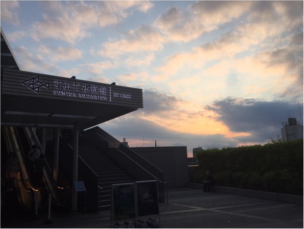 【6/18まで】すみだ水族館のスペシャルコラボ✨期間限定『ほたるの夜』でロマンチックな夜を♪♪ _2