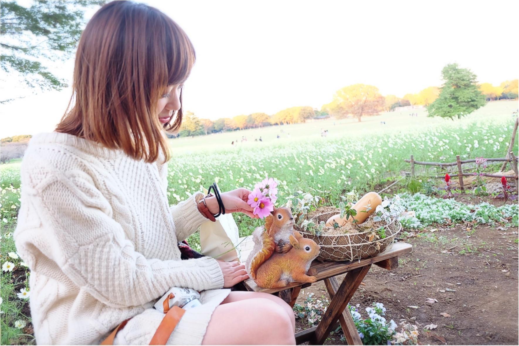 ★晴れた日は、カメラを持って昭和記念公園へ☺︎my camera は『LUMIX』!!_8