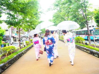 夏着物で鎌倉女子旅♡  紫陽花がとっても綺麗でした♡