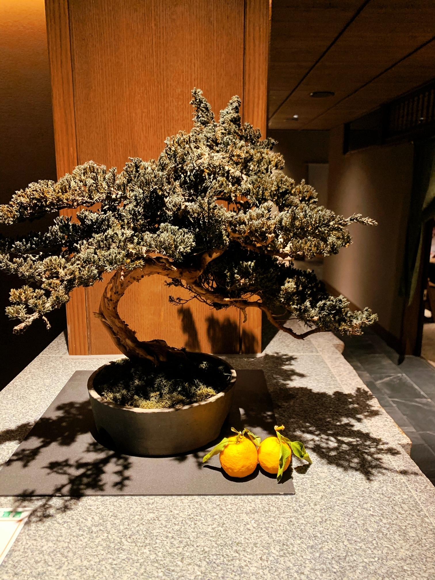 【なかなか予約が取れない!】東京に居ながらにして《箱根の温泉を楽しめる人気スポット》に行ってきた♡_17