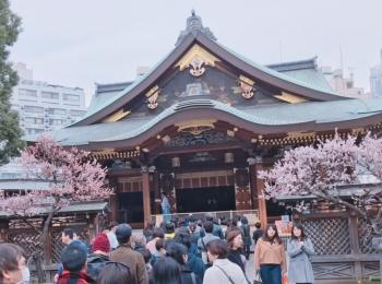 何する?東京のパワースポット神社で梅まつりが最高だよ♡