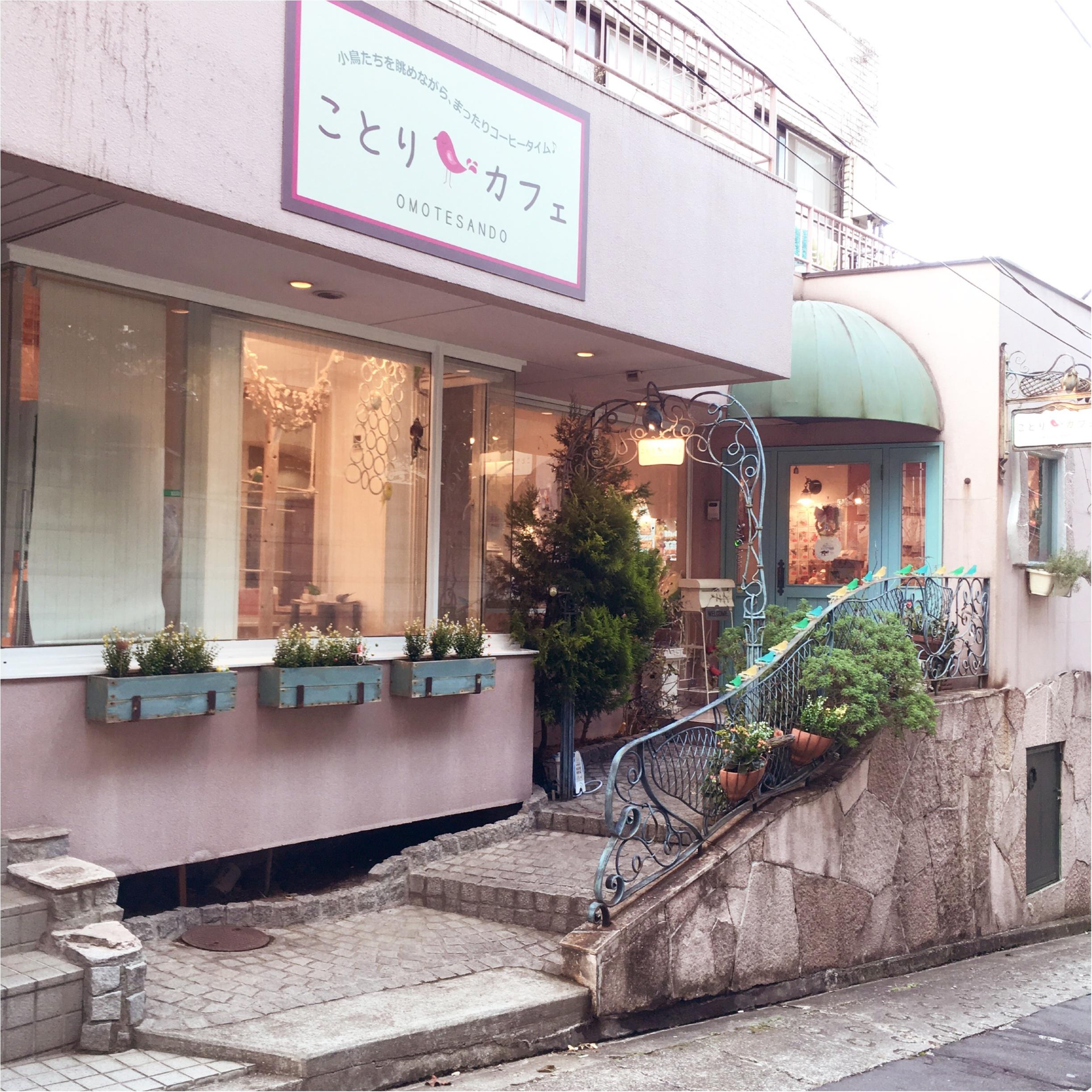『カピバラさん×ことりカフェ』コラボ♡ことりカフェ表参道店でカピバラさんケーキを食べてきました(﹡´◡`﹡ )_1