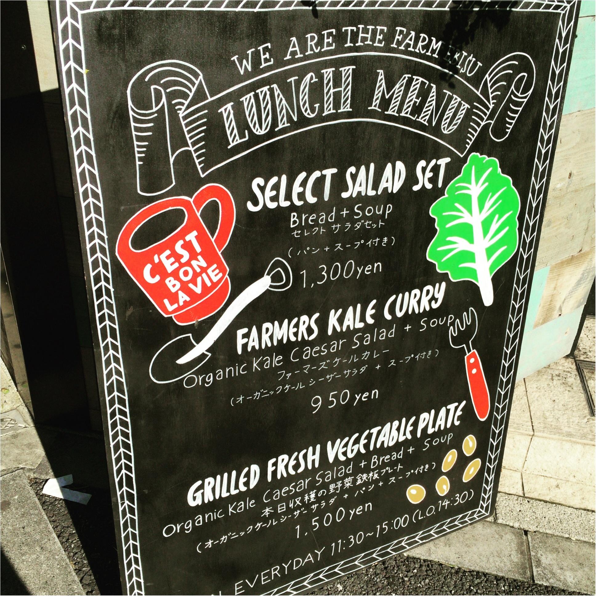 【恵比寿】オーガニック野菜を好きなだけ食べられるサラダランチが¥1,300!メインディッシュ+パン+スープ付き♡≪samenyan≫_3