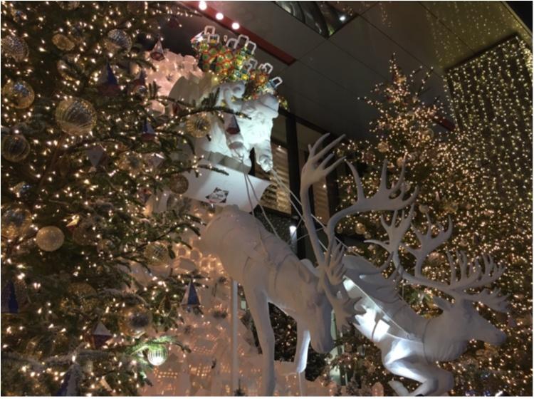 【銀ぶら】ティファニーブルーに惚れぼれ♡銀座のショーウィンドウでクリスマス気分を満喫♡♡_6