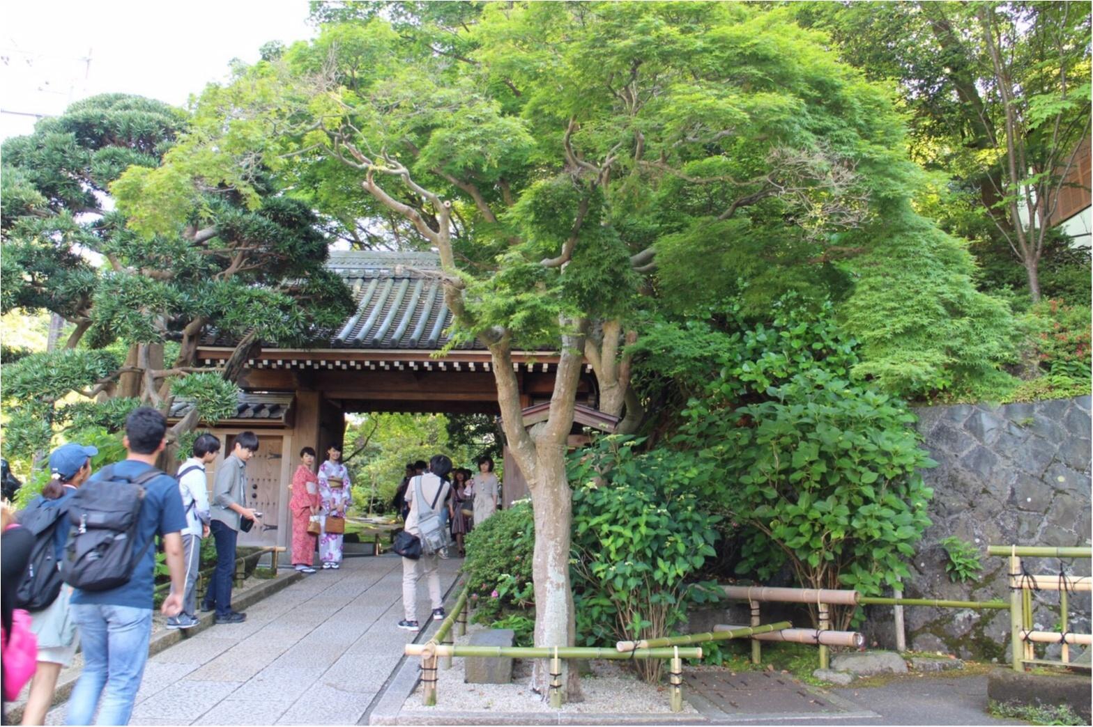 【鎌倉】着物で行きたいスポットNo.1♡フォトジェニックすぎる「報国寺」散策!_1