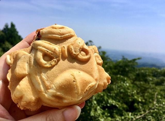 【休日の過ごし方】Go to 高尾山〜小学生ぶりに山登りしてみました〜_6