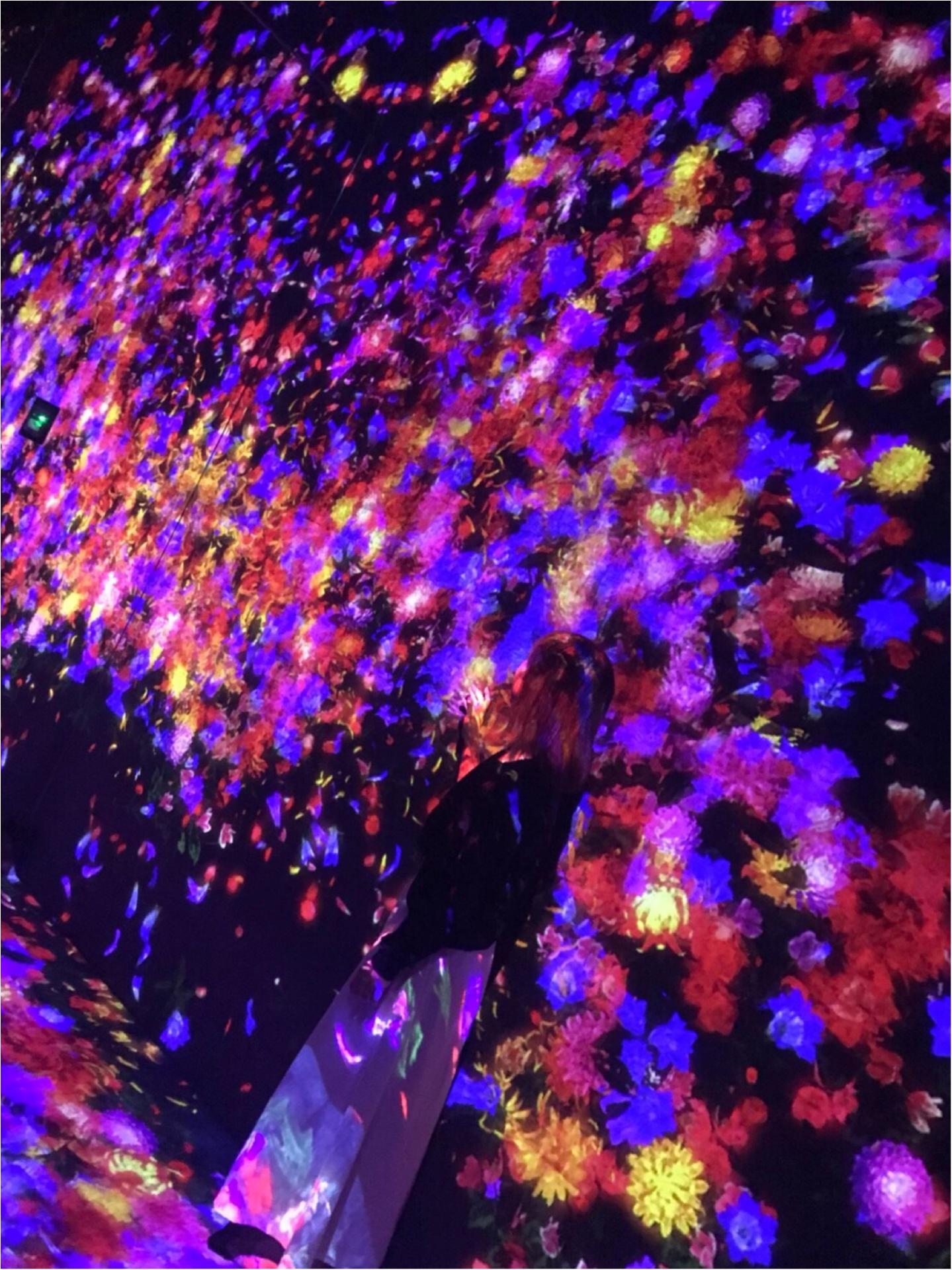 念願の【チームラボ】に行ってきました♡幻想的な空間に感動・興奮・鳥肌!!_5