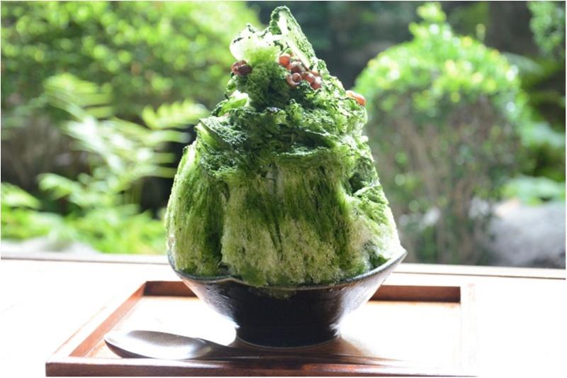 """かき氷ラバー必見! この夏、静岡県でぜったいに食べておきたい """"お茶かき氷"""" 10選♡_1"""